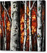Glimpse Of Red Canvas Print by Vickie Warner