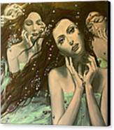 Glissando Canvas Print by Dorina  Costras