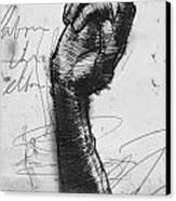 Glove Study Canvas Print by H James Hoff