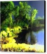 Glowing Pond On A Foggy Night Canvas Print by Ann Almquist