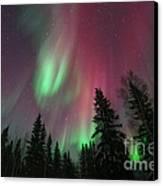 Glowing Skies Canvas Print