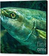 Go Fish 2 Canvas Print by Pam Vick
