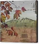 Gold Ridge Maple Canvas Print by Carolyn Doe
