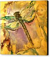 Golden Dragonfly Canvas Print by M C Sturman