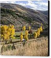 Golden Fall In Montana Canvas Print by Dana Moyer