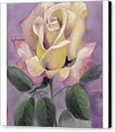 Golden Glory Canvas Print by Nancy Edwards