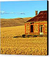 Golden Harvest Canvas Print by Bill  Robinson
