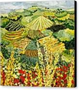 Golden Hedge Canvas Print