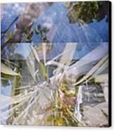 Golden Mean Holga Garden 1 Canvas Print by Carolina Liechtenstein
