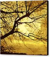 Golden Pond Canvas Print by Ann Powell