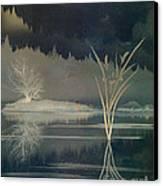 Golden Pond Lily Canvas Print by Bedros Awak