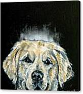 Golden Retriever Angel Canvas Print by Jay  Schmetz