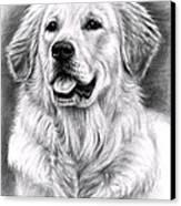 Golden Retriever Spence Canvas Print