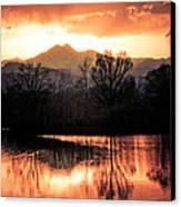 Goose On Golden Ponds 1 Canvas Print