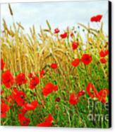 Grain And Poppy Field Canvas Print