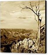 Grand Canyon Sepia Canvas Print