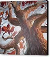 Grandeur Of Tree Canvas Print