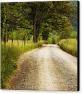 Gravel Road In The Smokies Canvas Print by Andrew Soundarajan