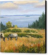 Grazing With A View Canvas Print