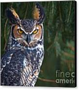 Great Horned Owl Canvas Print by Mike Mulick