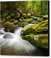 Great Smoky Mountains Gatlinburg Tn Roaring Fork - Gift Of Life Canvas Print by Dave Allen