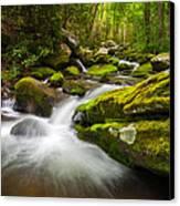 Great Smoky Mountains Gatlinburg Tn Roaring Fork - Gift Of Life Canvas Print