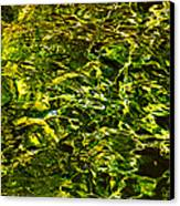 Green Gold Water Abstract. Feng Shui Canvas Print by Jenny Rainbow