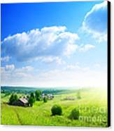 Green Grasses Canvas Print by Boon Mee