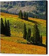 Green Mountain Trail Canvas Print by Raymond Salani III