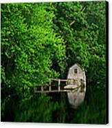 Green Reflections Canvas Print by Kerri Ann Crau