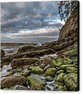 Green Stone Shore Canvas Print by Jon Glaser