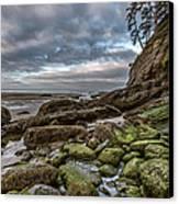 Green Stone Shore Canvas Print
