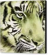 Green Tiger Canvas Print by Summer Celeste