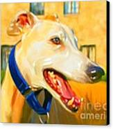 Greyhound Painting Canvas Print by Iain McDonald