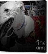 Greyhound Rescue 8 Canvas Print by Jackie Bodnar