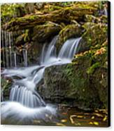 Grotto Falls Great Smoky Mountains Tennessee Canvas Print by Pierre Leclerc Photography