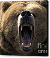 Growling Grizzly Bear Canvas Print by Mark Newman