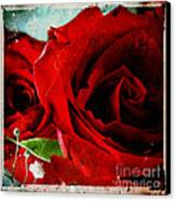 Grunge And Roses Canvas Print by Sharon Coty