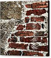 Grunge Brick Wall Canvas Print by Elena Elisseeva