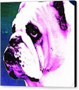 Grunt - Bulldog Pop Art By Sharon Cummings Canvas Print