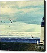 Gulls Way Canvas Print by Lianne Schneider