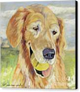 Gus Canvas Print by Pat Saunders-White