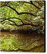 Halfway Creek At Low Tide - Everlglades Canvas Print by Matt Tilghman