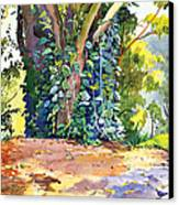 Hana Ivy/vine Tree Canvas Print