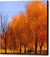 Hanging Leaves Canvas Print by Sarai Rachel