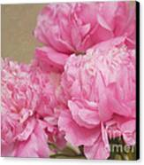 Happiness In Pink Silk Canvas Print