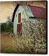 Happy Barn In Spring Canvas Print by Lorraine Heath