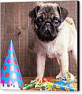 Happy Birthday Cute Pug Puppy Canvas Print by Edward Fielding
