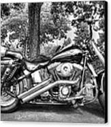 Harley D. Iron Horse Canvas Print