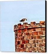 Hawk Castle Canvas Print by Rebecca Adams